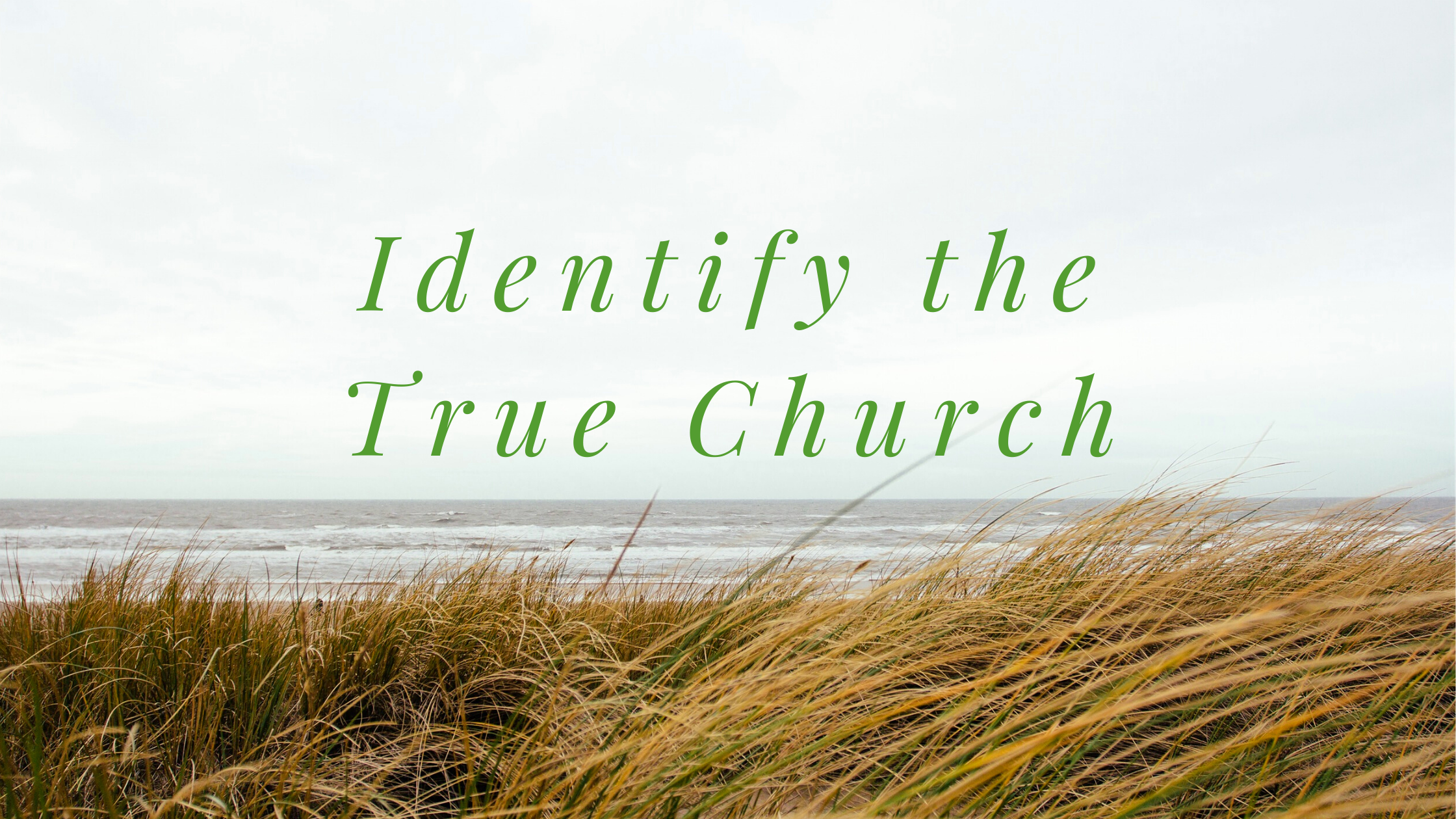 The True Definition of the Church